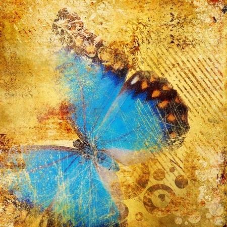butterfly_8120263_s